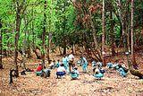 東の自然体験の森