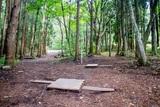西の自然体験の森